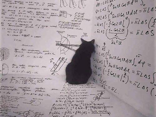 Equazioni primo grado