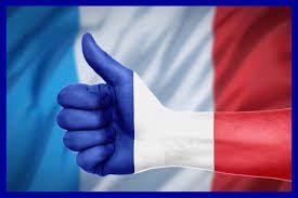 """Lezione di Francese """"Les gouts et les preferences"""" MEDIA B E D-PROF.SSA PAVONE"""